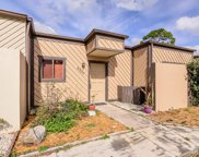 4307 Cedar Grove Street, Holiday image