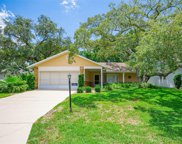 6397 Pine Meadows Drive, Spring Hill image