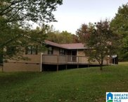 365 House Rd, Remlap image