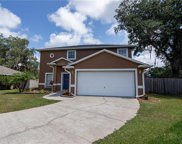 2724 Wilder Reserve Drive, Plant City image