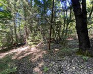 Lot 714 Maple Drive, Weed image