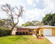 2223 Cathedral Drive, Palm Harbor image