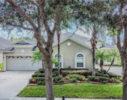 20662 Amanda Oak Court, Land O' Lakes image