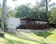 1361  County Rd 3099, Double Springs image