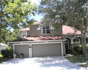 9320 Edistro Place, New Port Richey image