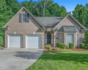 297 River Birch  Circle, Mooresville image