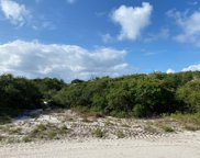 650 Gulf Shore Dr, Carrabelle image