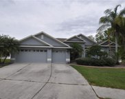 21229 Tyrell Way, Land O' Lakes image