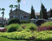 17981 Villa Creek Drive, Tampa image