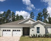 16359 Orange Seed Lane, Winter Garden image
