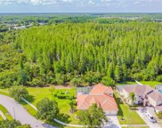 4313 Waterford Landing Drive, Lutz image