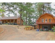 333 COATS  RD, Tenmile image