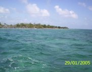 000 S N-407 Larke Caye - Belize Placencia Island, Houston image