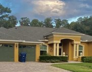 6440 Wisteria Loop, Land O' Lakes image
