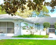 2202 Perry Avenue, Spring Hill image