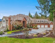 16434 246th Ave NE, Woodinville image
