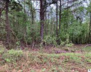 Lot 6 Emerson Road, Downsville image