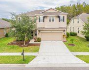 5574 Sweet William Terrace, Land O' Lakes image