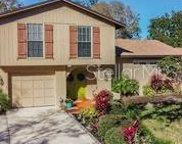7307 Woodkirk Court, Tampa image
