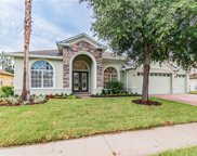 21523 Draycott Way, Land O' Lakes image