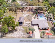 11238 Kodiak Wren Road, Weeki Wachee image