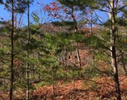 Bluff Mountain Rd, Sevierville image