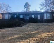1229 Edinborough Ln, Vestavia Hills image