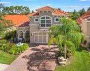 14612 Mirasol Manor Court, Tampa image