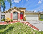 10266 Oasis Palm Drive, Tampa image