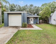 23030 Clearwater Place, Land O' Lakes image