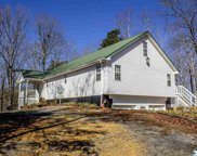 3015 County Road 60, Gaylesville image