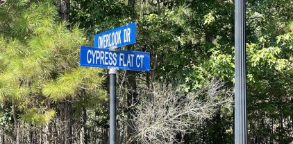320 Cypress Flat Ct., Conway