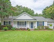 441 Mount Royall Drive, Mount Pleasant image