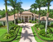 11763 Calla Lilly Court, Palm Beach Gardens image