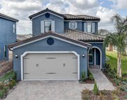 19530 Roseate Drive, Lutz image