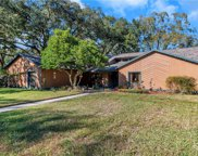 15902 Dover Cliffe Drive, Lutz image