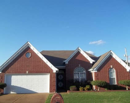 808 Painted Oak, Memphis