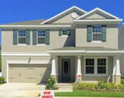 7117 Park Tree Drive, Tampa image