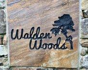 420 Wild Iris, Signal Mountain image
