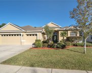14735 Edgemere Drive, Spring Hill image