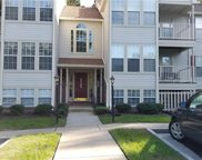 3100 Wallaby  Trace Unit 704, Henrico image
