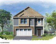 409 Woolbright Court, Chapin image