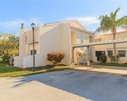 8702 Cove Court, Tampa image