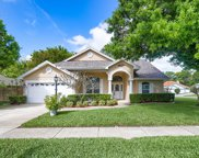 712 Sunflower Drive, Palm Harbor image