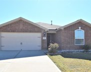 3005 Marble Falls Drive, Forney image