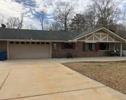 119 Mossy Oak  Road, Greenville image