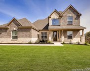 175 Red Maple Path, Castroville image