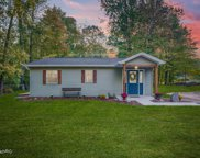 11698 Maple Drive, Lakeview image