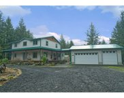 13603 NE PUP CREEK  RD, Woodland image