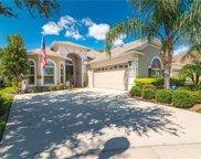 20944 Amanda Oak Court, Land O' Lakes image